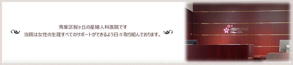 桜ヒルズウィメンズクリニック|仙台市桜ヶ丘にある産婦人科医院です。不妊治療も行っております。